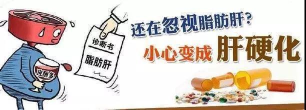 脂肪肝的危害