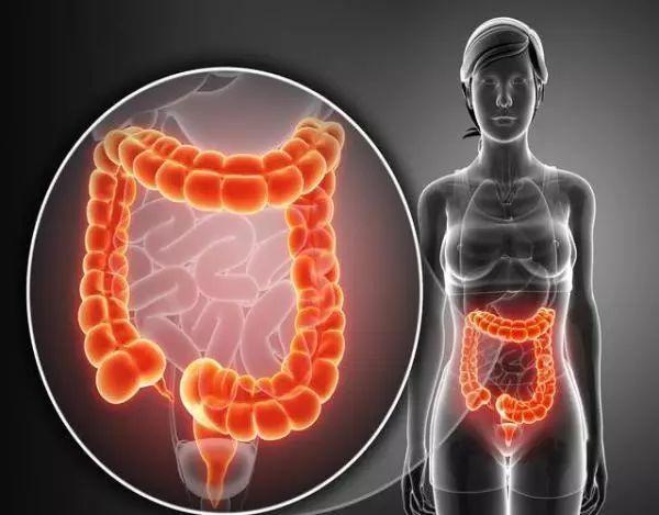 """皮肤上总长东西,要小心:你的肠道可能有""""毒性""""!"""